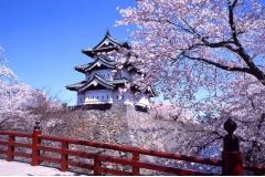 Mẹo xin visa du lịch Nhật Bản để kịp đi đúng mùa đẹp nhất trong năm
