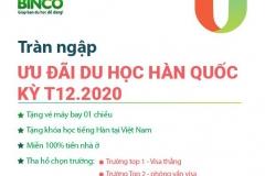 TRÀN NGẬP ƯU ĐÃI DU HỌC HÀN QUỐC KỲ T12.2020