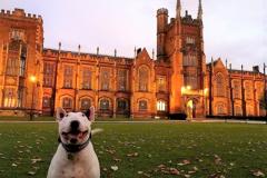 Đại học Queen's Belfast, vương quốc Anh