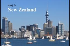 NEW ZEALAND LẦN ĐẦU TIÊN VÀ CŨNG LÀ NƯỚC DUY NHẤT CÔNG BỐ HỌC BỔNG CHÍNH PHỦ CHO BẬC THPT