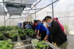 Học Nghiên cứu Nông nghiệp và các ngành liên quan tại Singapore