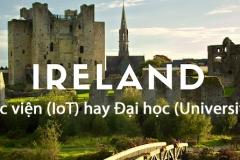 Du học Ireland: Sự khác nhau giữa các trường học viện (Institute of Technology) và Đại học (University)