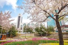 CÙNG EM TRẦN VĂN LINH - HỌC SINH BINCO giới thiệu trường Đại học INHA ở Hàn Quốc nhé