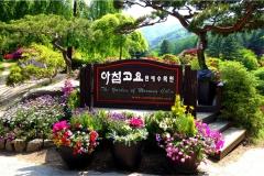 Lễ Hội Mùa Xuân Hàn Quốc - Mỗi bước chân là một trải nghiệm