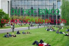 Ưu đãi lớn khi đi du học Úc tại BINCO