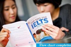 Kinh nghiệm luyện thi IELTS của bạn đạt IELTS 8.0