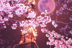 Hanami - Lễ hội hoa anh đào truyền thống tuyệt đẹp ở Nhật Bản.