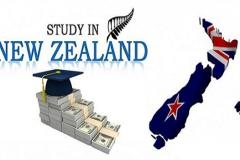 HỌC BỔNG WELLINGTON - Học bổng chương trình THPT trên $25,000 tại 12 trường ở Wellington