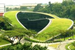 Tại sao nên chọn học tập ở Singapore